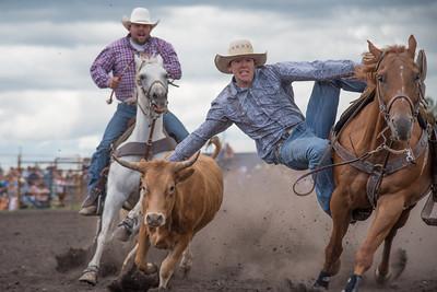 2016 rodeo saturday steer wrestling-4112