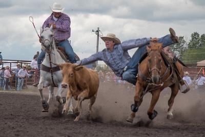 2016 rodeo saturday steer wrestling-4109
