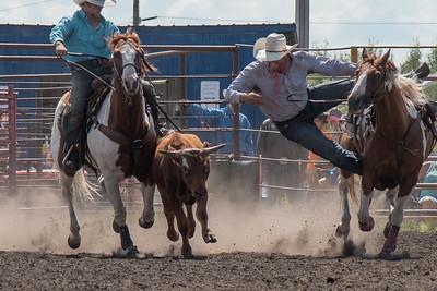 2016 rodeo sunday steer wrestling-5274