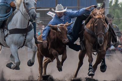 2016 rodeo sunday steer wrestling-5215