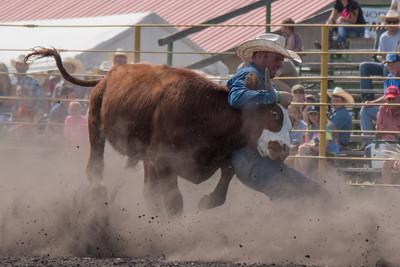 2016 rodeo sunday steer wrestling-5204