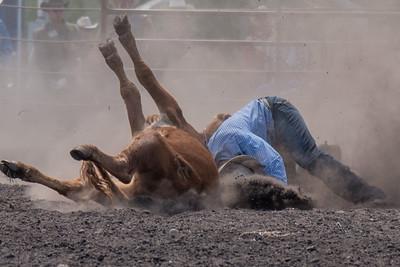 2016 rodeo sunday steer wrestling-5219