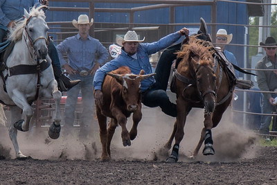 2016 rodeo sunday steer wrestling-5213