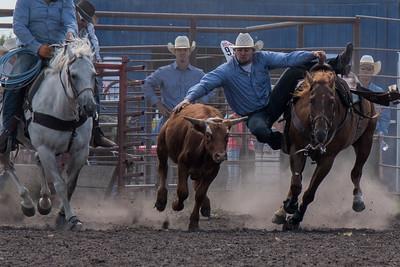 2016 rodeo sunday steer wrestling-5212