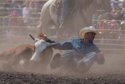 2016 rodeo sunday steer wrestling-5210