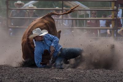 2016 rodeo sunday steer wrestling-5217