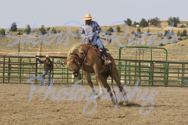 Rodeos & Brandings