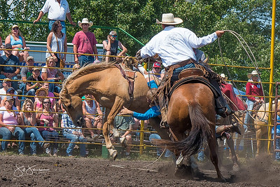broncs_sunday_2017-3671