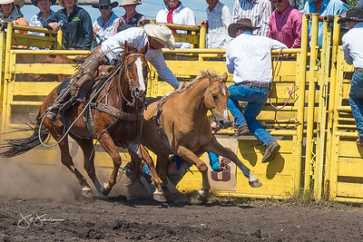 broncs_sunday_2017-3681