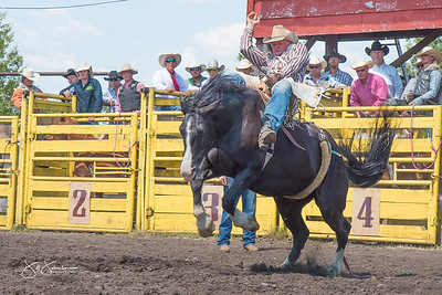 broncs_sunday_2017-3598