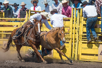 broncs_sunday_2017-3682
