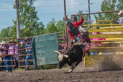 bulls_saturday_2017-3172
