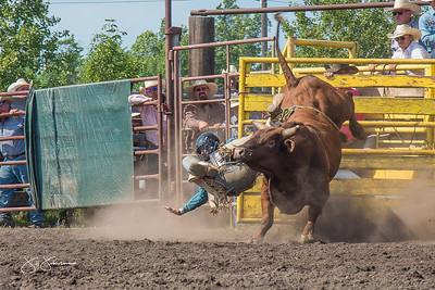 bulls_saturday_2017-3209