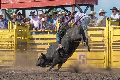 bulls_saturday_2017-3196