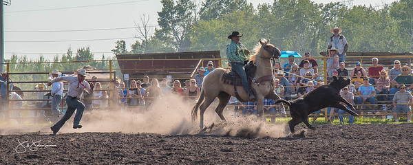 roping_friday_2017-1384