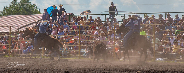 team_roping_saturday_2017-3020