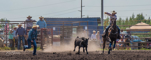 roping_sunday_2017-3758