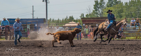 roping_sunday_2017-3762