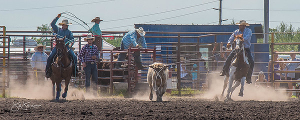 team_roping_sunday_2017-3995