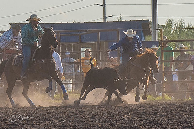 steer_wrestling_friday_2017-1640