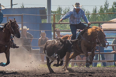 steer_wrestling_sunday_2017-3942