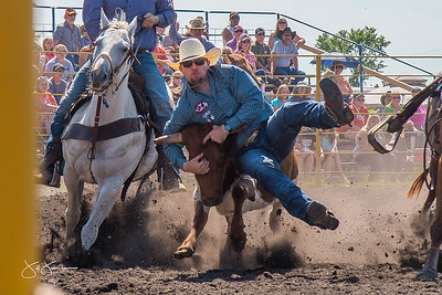 steer_wrestling_sunday_2017-3955