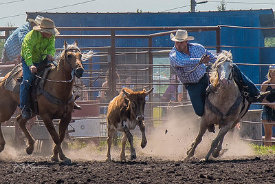 steer_wrestling_sunday_2017-3940