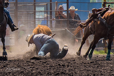steer_wrestling_sunday_2017-3963