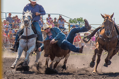 steer_wrestling_sunday_2017-3954