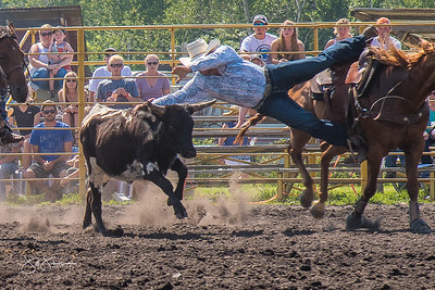 steer_wrestling_sunday_2017-3945