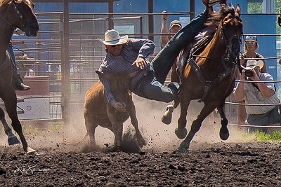 steer_wrestling_sunday_2017-3961