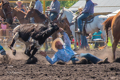 steer_wrestling_sunday_2017-3949