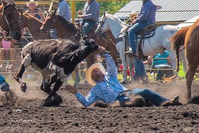 steer_wrestling_sunday_2017-3949