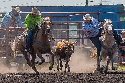steer_wrestling_sunday_2017-3941