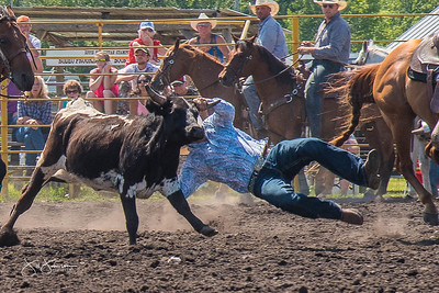 steer_wrestling_sunday_2017-3948