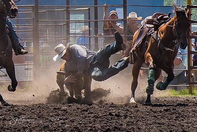 steer_wrestling_sunday_2017-3962