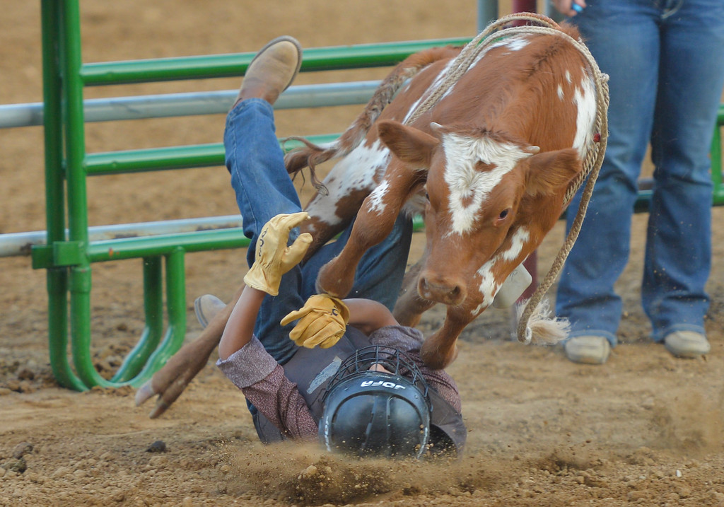 Justin Sheely | The Sheridan Press<br /> Clayton Burgess falls off in calf riding during the Sheridan County Rodeo Saturday at the Sheridan County Fairgrounds.