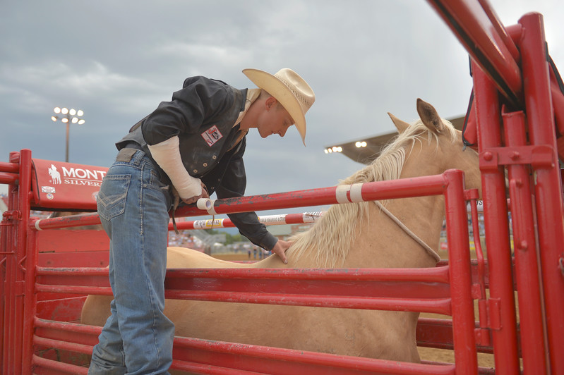 Justin Sheely | The Sheridan Press<br /> Bareback rider Hunter Carlson looks at Exotic Blond before putting on his rigging during the Sheridan WYO Rodeo Saturday at the Sheridan County Fairgrounds.