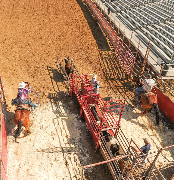 Mike Dunn | The Sheridan Press<br /> Team ropers ride out of the gate during the Bob King Memorial Roping Sunday at the Sheridan County Fairgrounds. The annual event includes team ropers from across the region and pays respect to famous cowboy and rope maker Bob King.