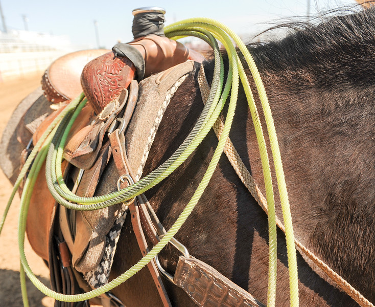 Mike Dunn | The Sheridan Press <br /> A rope hangs on the saddle of a horse during the Bob King Memorial Roping Sunday at the Sheridan County Fairgrounds. The annual event includes team ropers from across the region and pays respect to famous cowboy and rope maker Bob King.