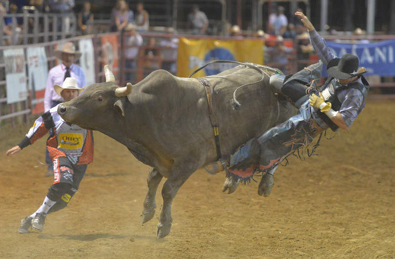 Justin Sheely | The Sheridan Press<br /> Tell Kobold of Sheridan is thrown off the bull during the Sheridan WYO Rodeo Saturday at the Sheridan County Fairgrounds.
