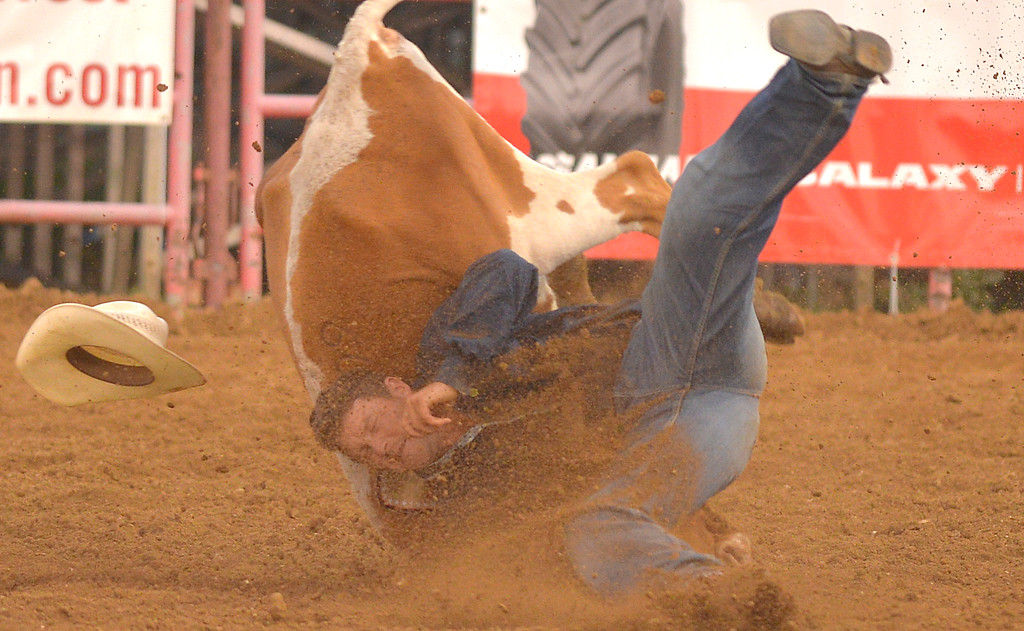 Justin Sheely | The Sheridan Press<br /> Calder Johnston of Elm Springs, South Dakota, tumbles over the steer yet manages to wrestle it down in 6.1 seconds during the Sheridan WYO Rodeo Saturday at the Sheridan County Fairgrounds.