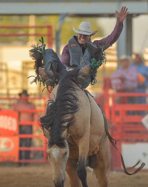 Justin Sheely | The Sheridan Press<br /> Dantan Bertsch of Saskatchewan, Canada, competes in bareback riding during the Sheridan WYO Rodeo Wednesday at the Sheridan County Fairgrounds.