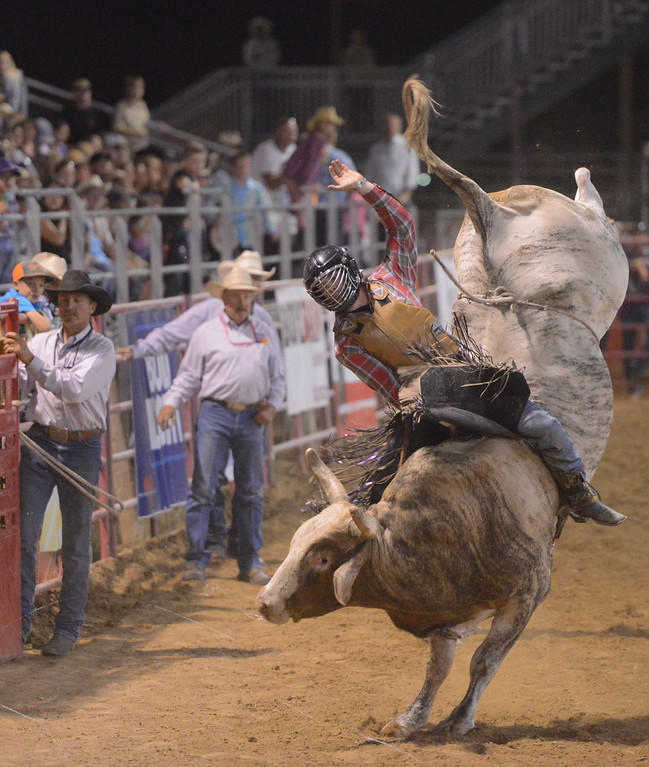 Justin Sheely   The Sheridan Press<br /> Chase Robbins of Marsing, Idaho, competes in bull riding during the Sheridan WYO Rodeo Wednesday at the Sheridan County Fairgrounds.