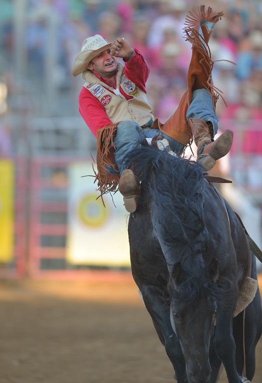 Justin Sheely | The Sheridan Press<br /> Taylor Broussard of Estherwood, Louisiana, competes in bareback during Thursday's Sheridan WYO Rodeo.