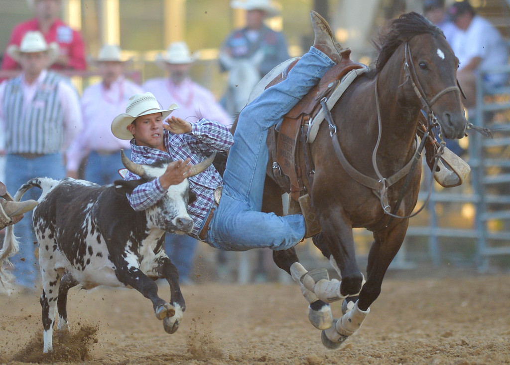 Justin Sheely | The Sheridan Press<br /> Cameron Morman of North Dakota competes in steer wrestling during Thursday's Sheridan WYO Rodeo at the Sheridan County Fairgrounds.