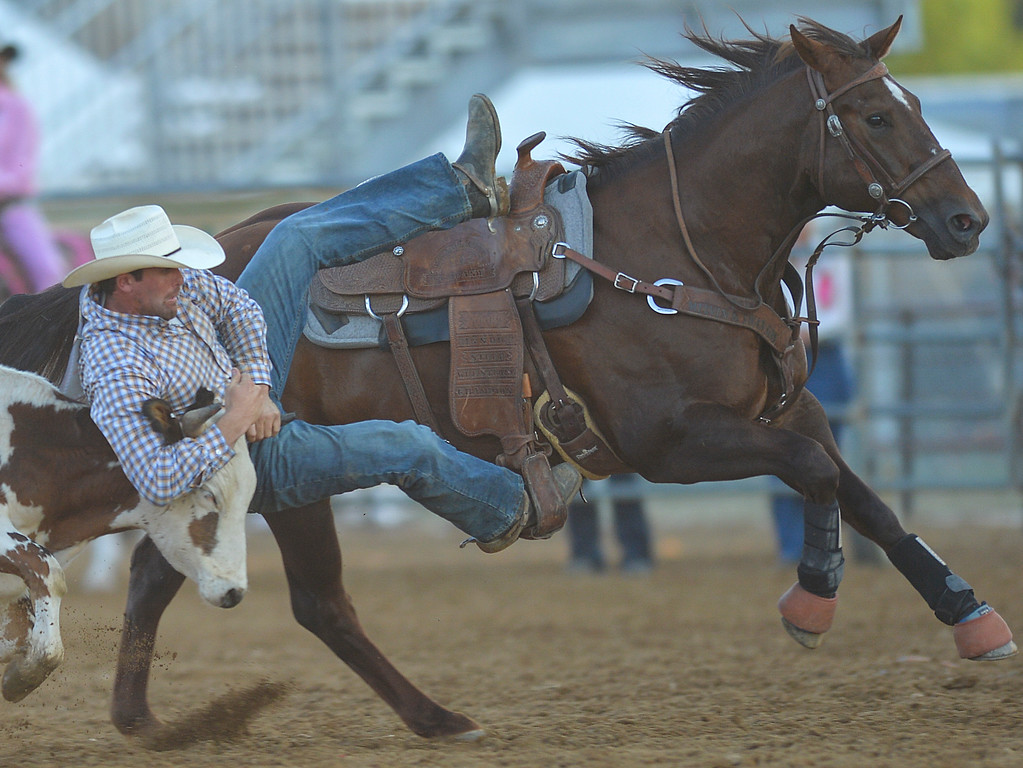 Justin Sheely | The Sheridan Press<br /> Errol Frain of Marysville, California, competes in steer wrestling during Thursday's Sheridan WYO Rodeo at the Sheridan County Fairgrounds.