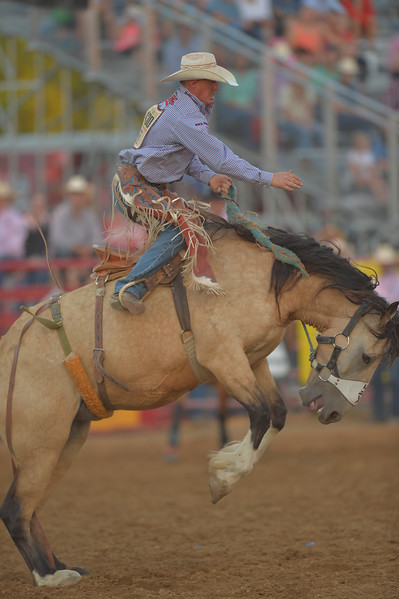 Justin Sheely | The Sheridan Press<br /> Local competitor Chet Johnson competes in saddle bronc riding during Thursday's Sheridan WYO Rodeo at the Sheridan County Fairgrounds.
