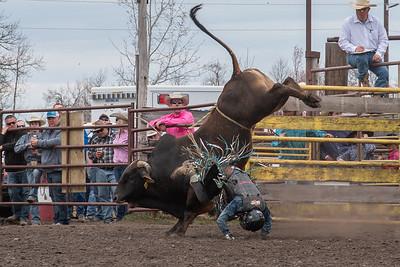 fp_benefit_bulls-6643