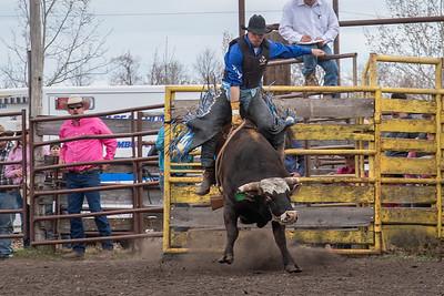 fp_benefit_bulls-6627